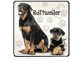 Rotweiler kutyás hűtőmágnes