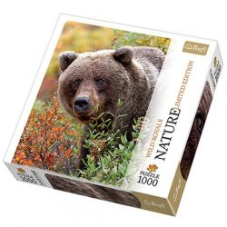 Medve puzzle