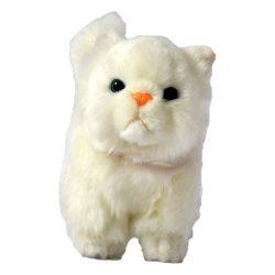Fehér plüss cica