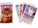 A macskák - Kvíz és kvartett kártyajáték