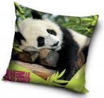 Panda macis párna