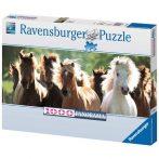1.000 darabos lovas puzzle
